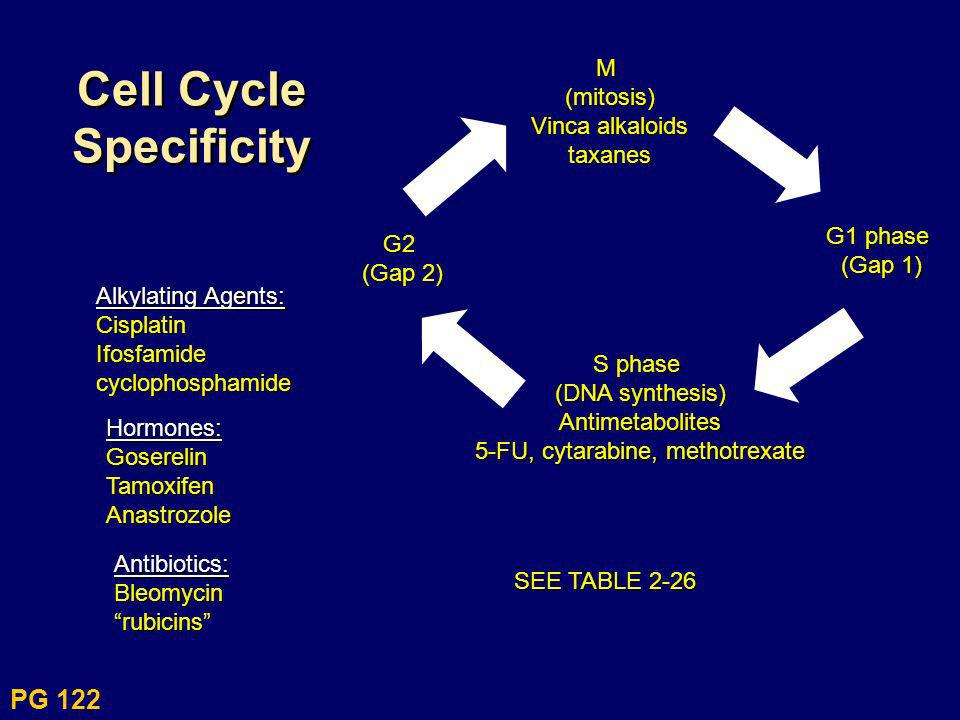 Cell Cycle SpecificityM(mitosis) Vinca alkaloids taxanes G1 phase (Gap 1) S phase (DNA synthesis) Antimetabolites 5-FU, cytarabine, methotrexate G2 (G