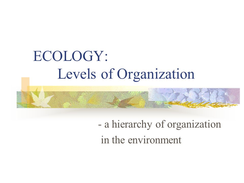 ECOLOGY: Levels of Organization - a hierarchy of organization in the environment