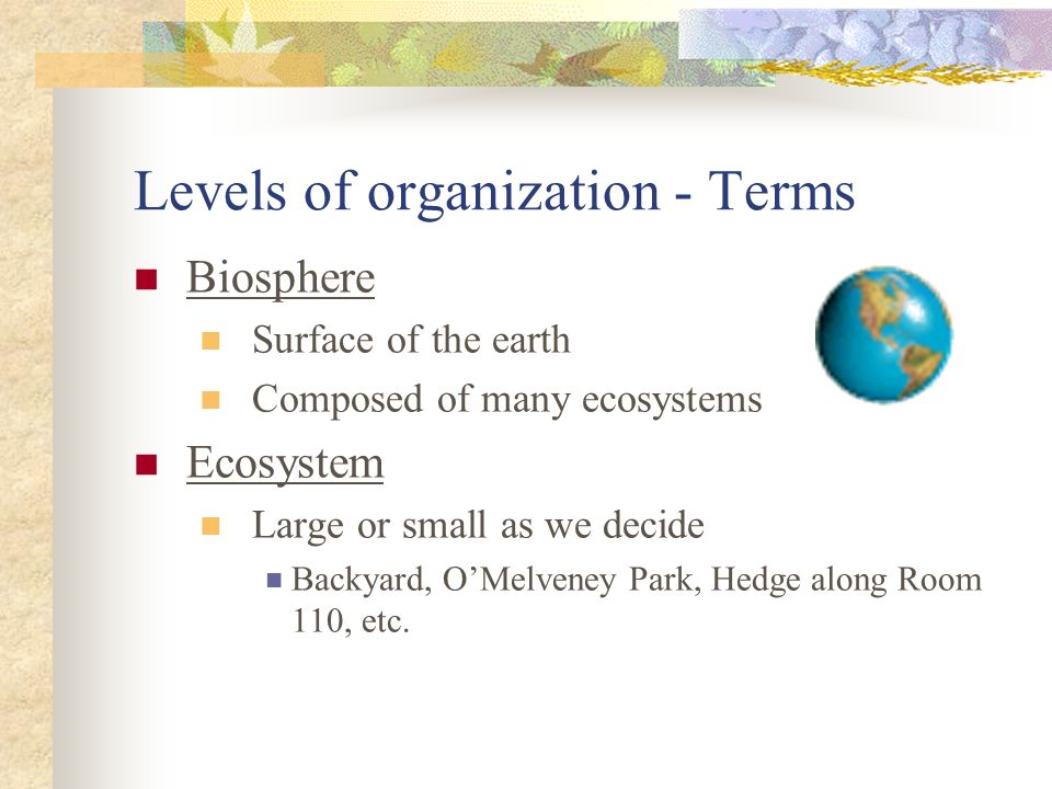 Levels of organization - Terms Biosphere Surface of the earth Composed of many ecosystems Ecosystem Large or small as we decide Backyard, OMelveney Pa