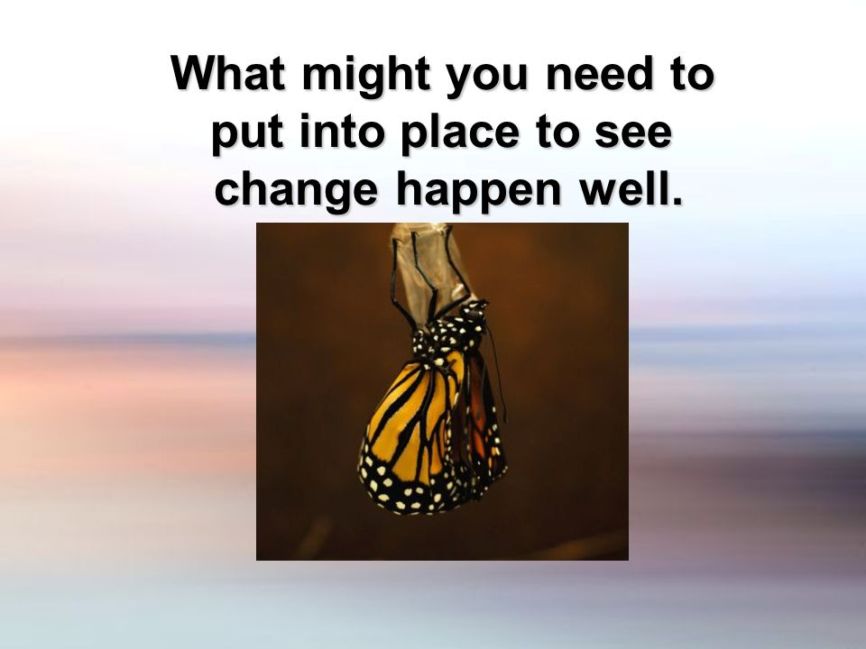 What might you need to put into place to see change happen well.