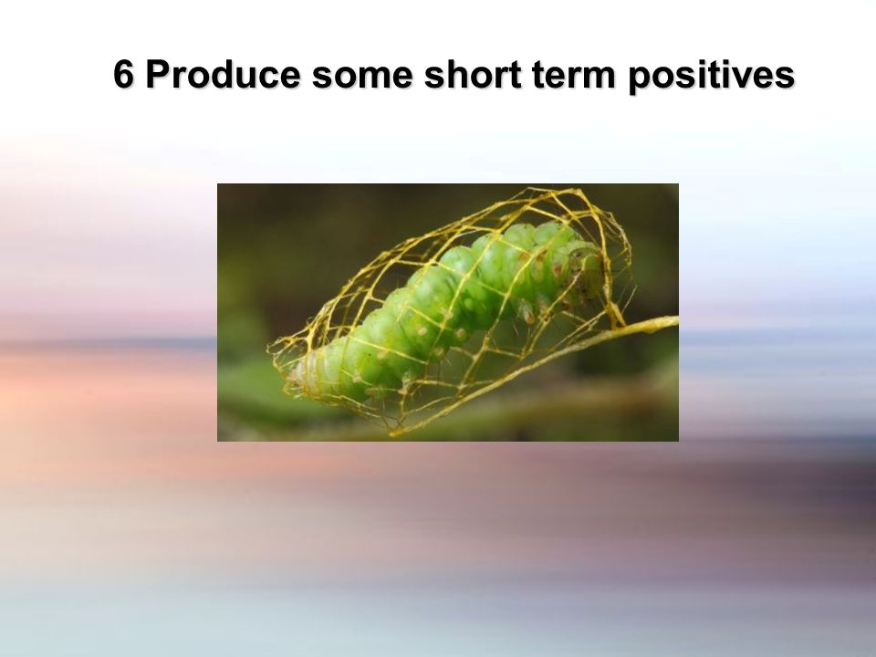 6 Produce some short term positives