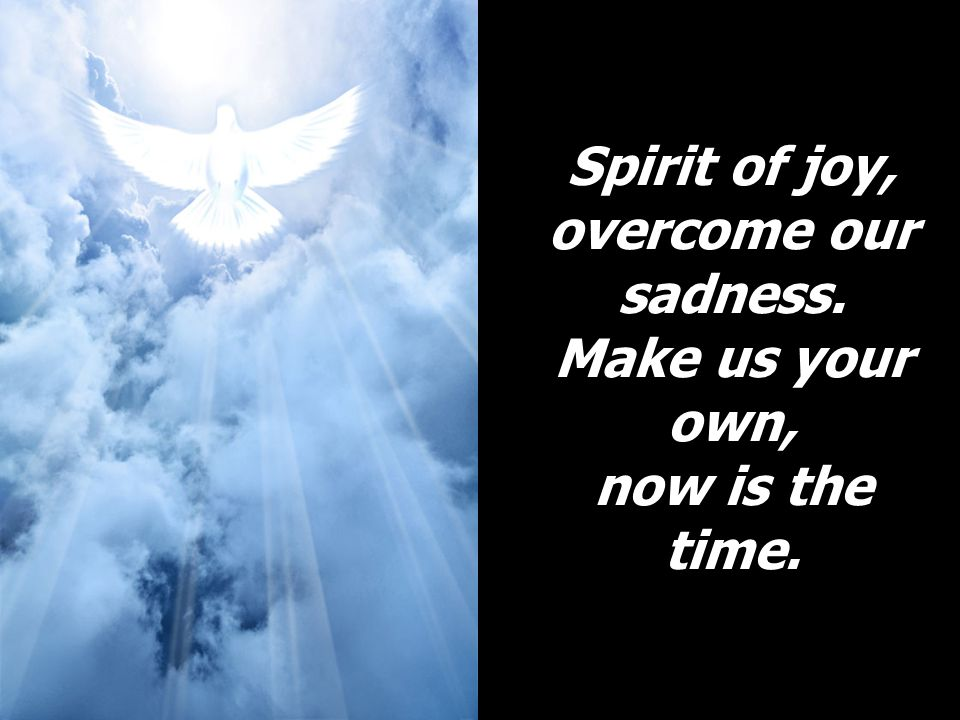 Spirit of joy, overcome our sadness. Make us your own, now is the time.