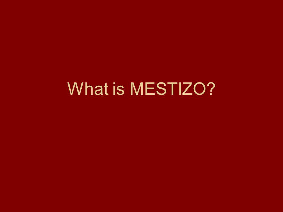 What is MESTIZO?