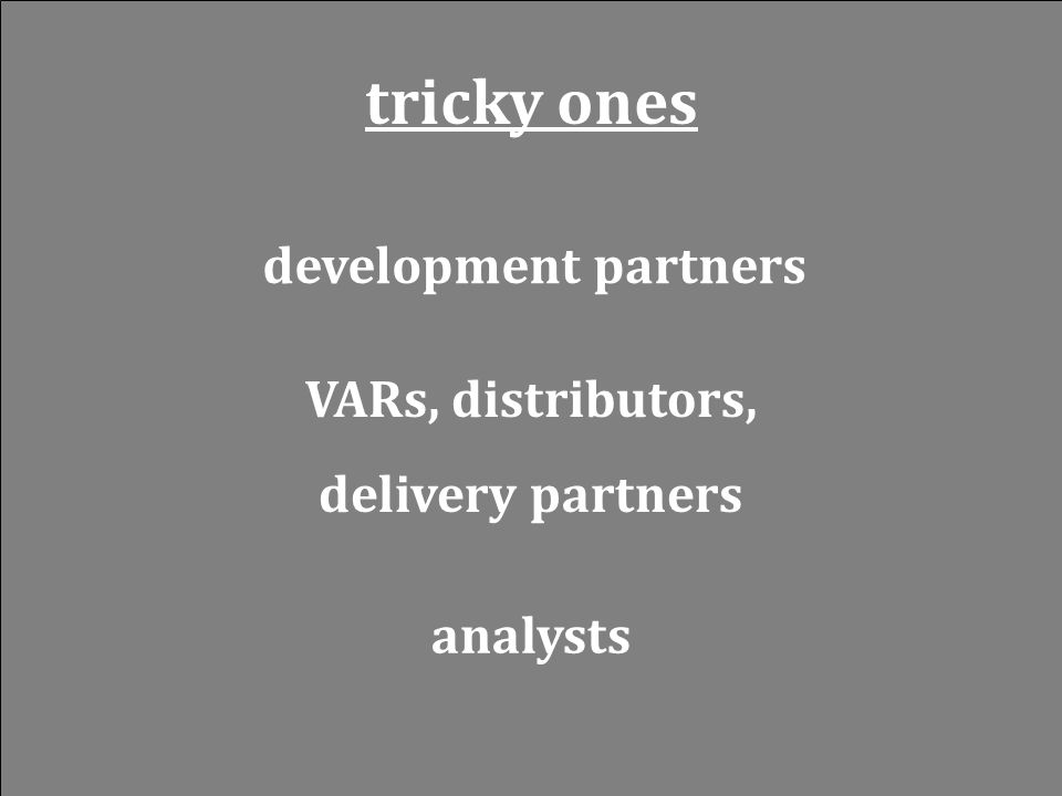 tricky ones development partners VARs, distributors, delivery partners analysts