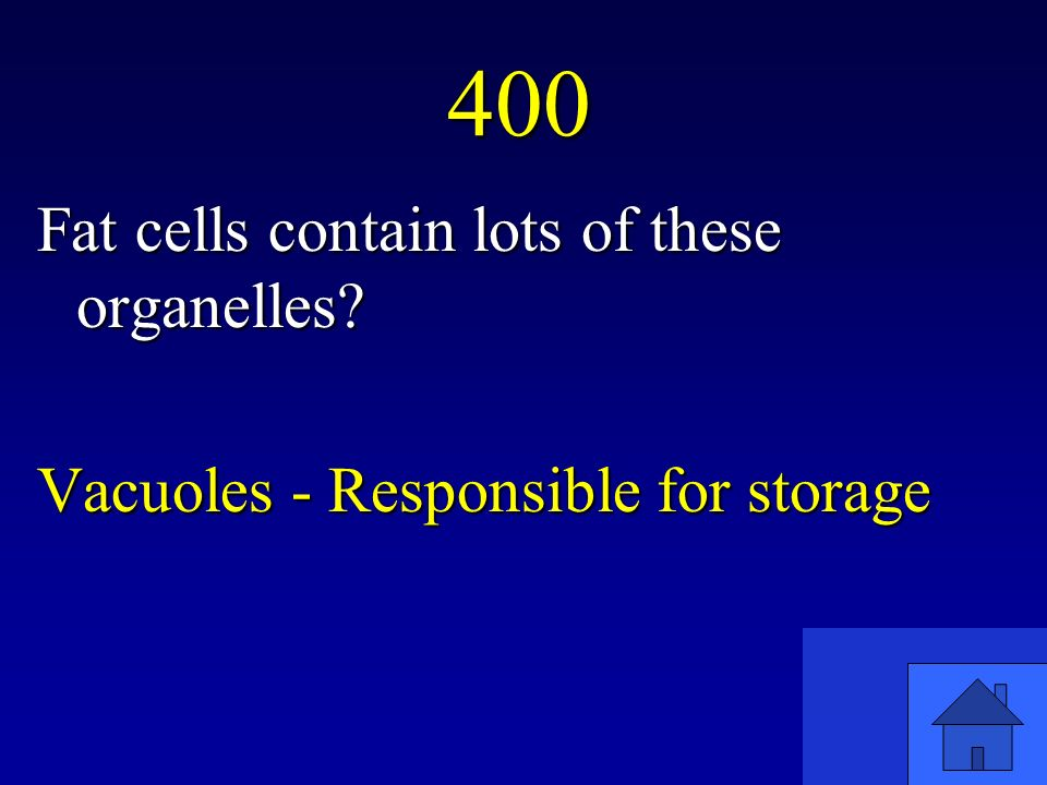 400 Fat cells contain lots of these organelles