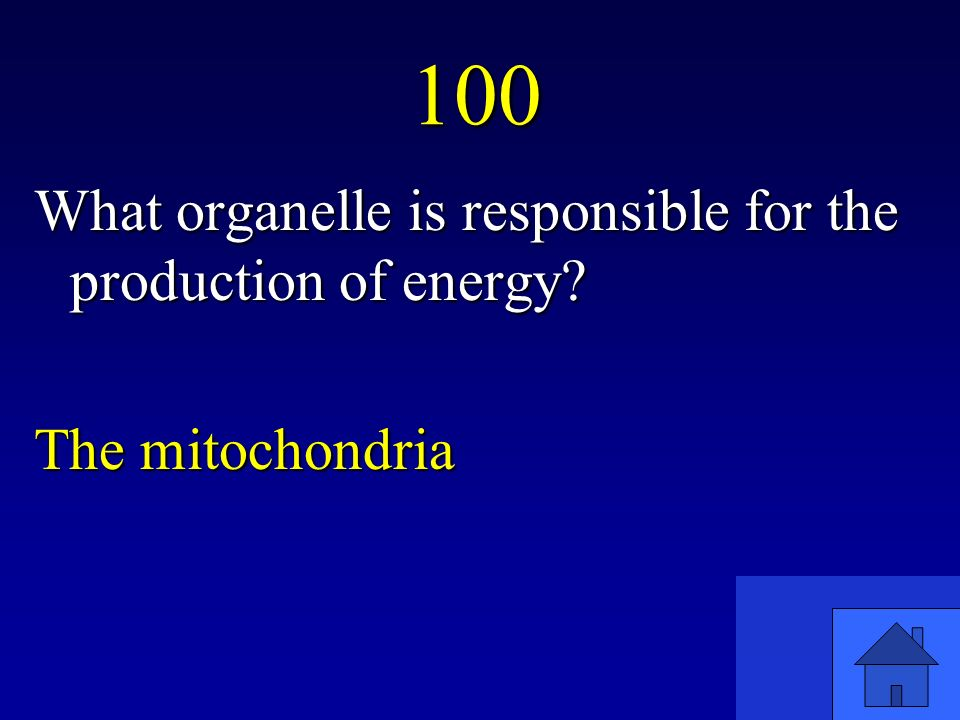 100 What organelle is responsible for the production of energy