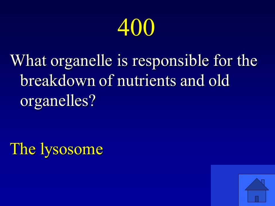 400 What organelle is responsible for the breakdown of nutrients and old organelles