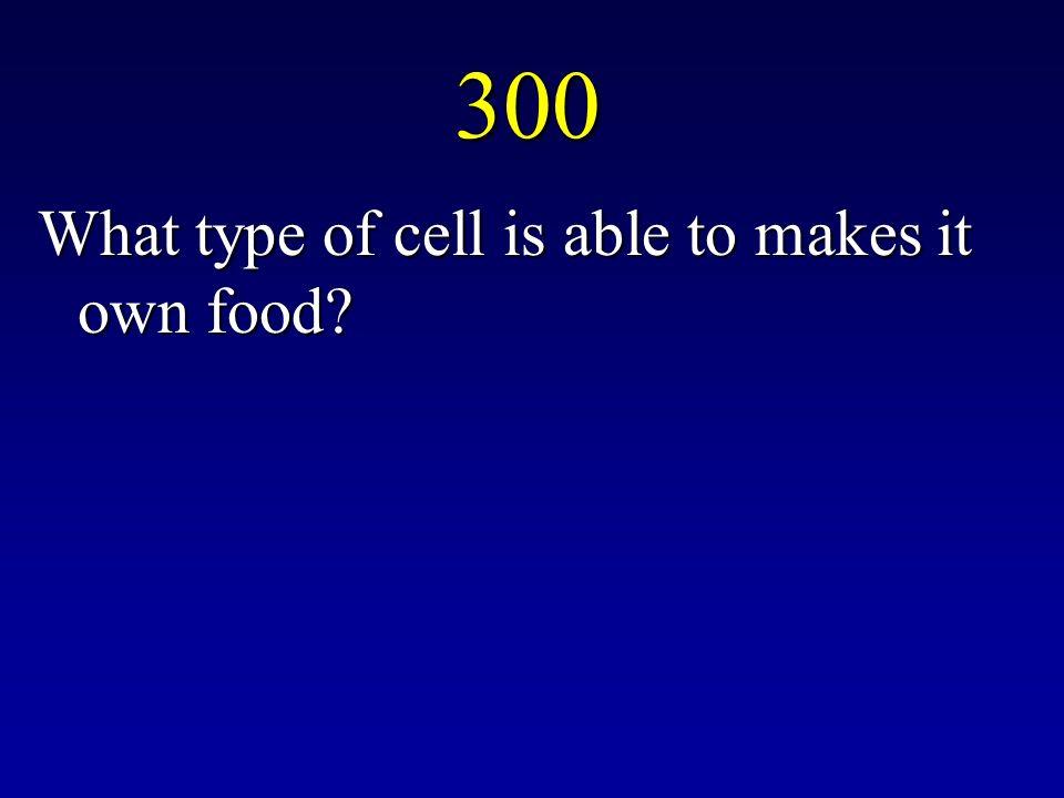 200 Diffusion