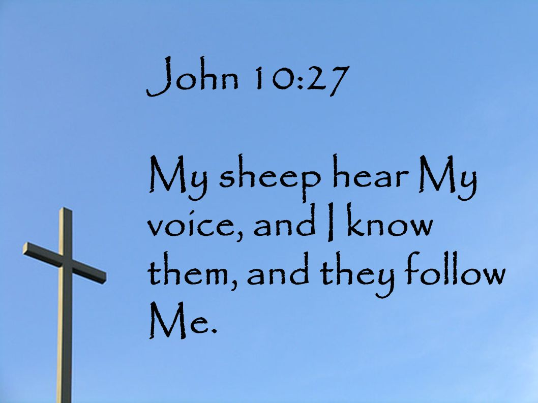 John 10:27 My sheep hear My voice, and I know them, and they follow Me.