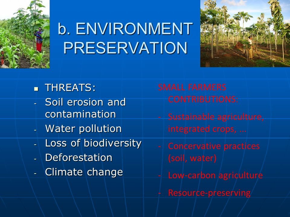 b. ENVIRONMENT PRESERVATION THREATS: THREATS: - Soil erosion and contamination - Water pollution - Loss of biodiversity - Deforestation - Climate chan