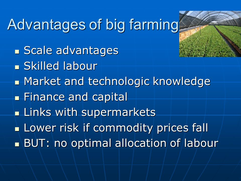 Advantages of big farming Scale advantages Scale advantages Skilled labour Skilled labour Market and technologic knowledge Market and technologic knowledge Finance and capital Finance and capital Links with supermarkets Links with supermarkets Lower risk if commodity prices fall Lower risk if commodity prices fall BUT: no optimal allocation of labour BUT: no optimal allocation of labour