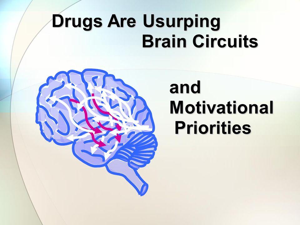 Drugs Are Usurping Brain Circuits Brain Circuits andMotivational Priorities Priorities