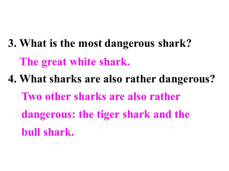 The three types of shark attacks: In the main type, the shark attacks you because it mistakes you for a fish, but when it tastes human flesh it decides to give up and swims away.