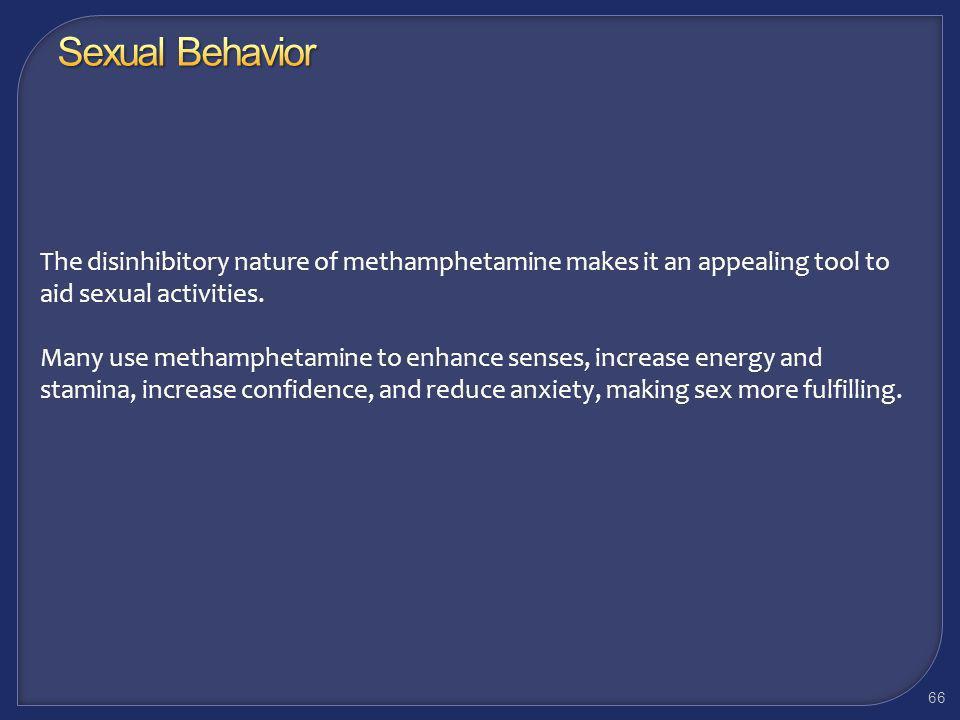 Working With Methamphetamine Users: Sexual Behavior 65