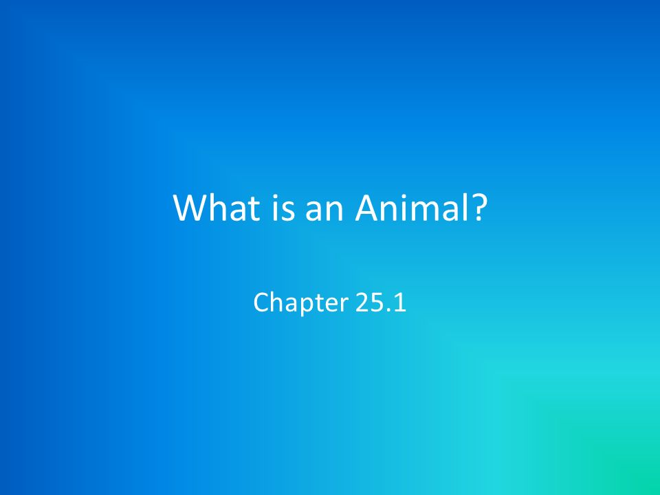 What is an Animal? Chapter 25.1
