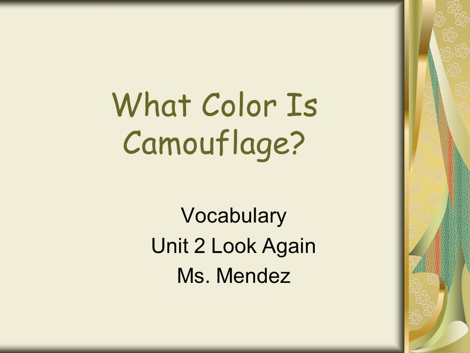 What Color Is Camouflage? Vocabulary Unit 2 Look Again Ms. Mendez