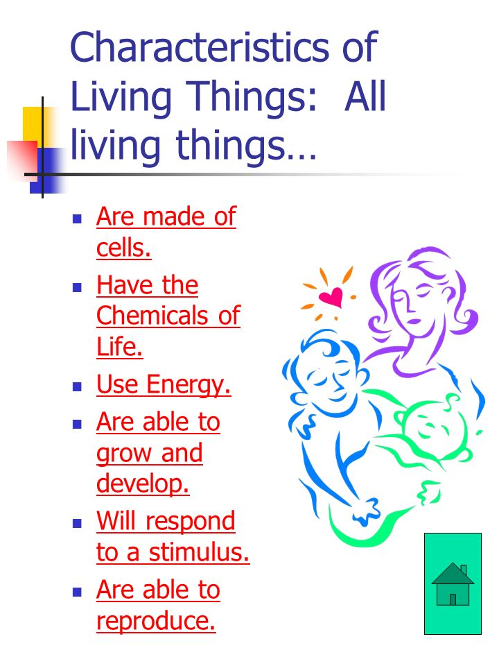 Characteristics of Living Things: All living things… Are made of cells.