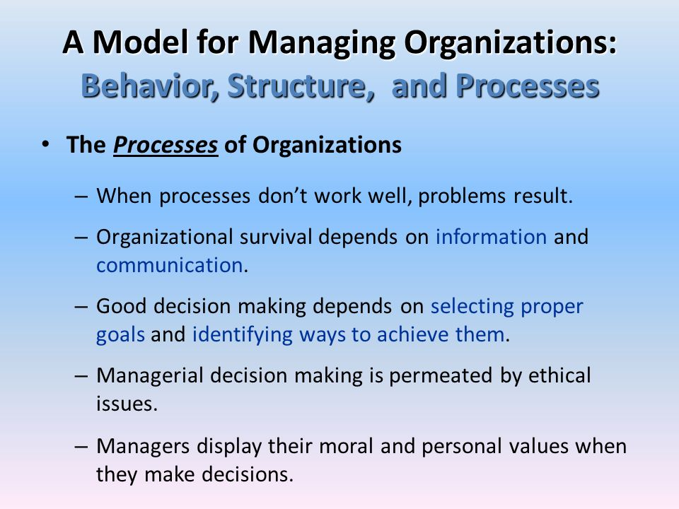 A Model for Managing Organizations: Behavior, Structure, and Processes The Processes of Organizations – When processes dont work well, problems result