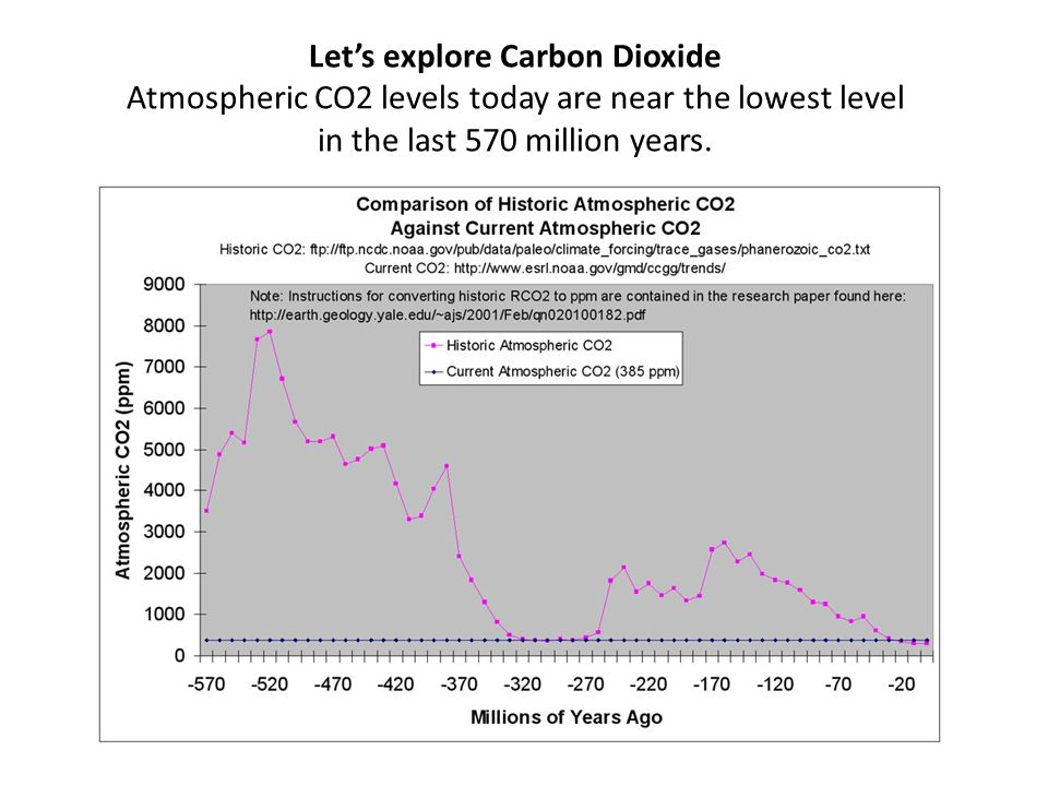 Lets explore Carbon Dioxide Atmospheric CO2 levels today are near the lowest level in the last 570 million years.