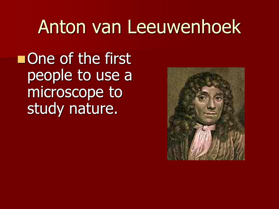 Anton van Leeuwenhoek One of the first people to use a microscope to study nature. One of the first people to use a microscope to study nature.