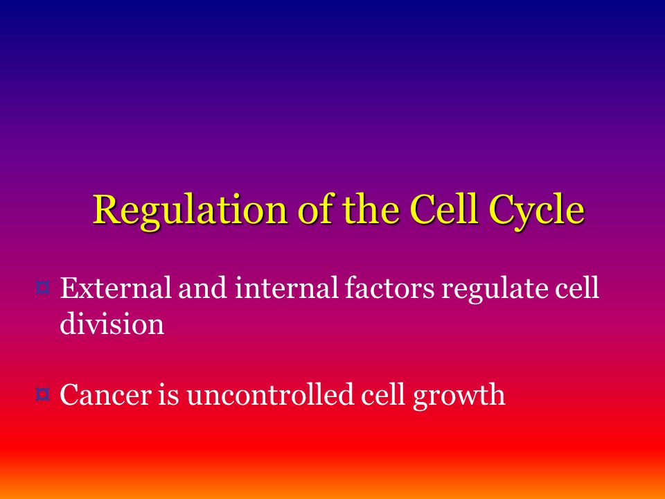 Regulation of the Cell Cycle ¤ External and internal factors regulate cell division ¤ Cancer is uncontrolled cell growth