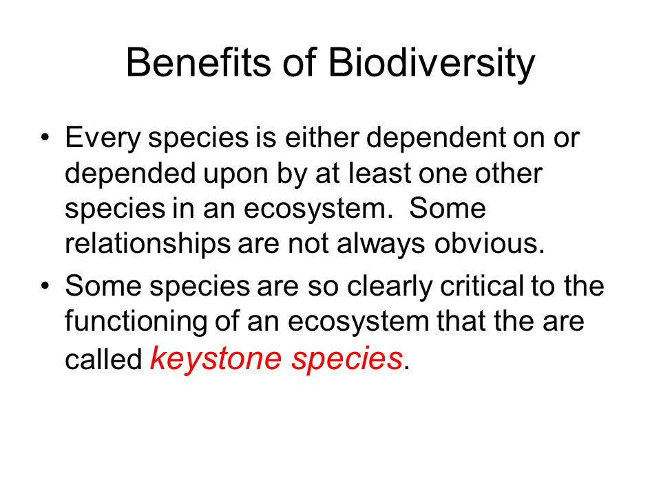 Benefits of Biodiversity Every species is either dependent on or depended upon by at least one other species in an ecosystem. Some relationships are n