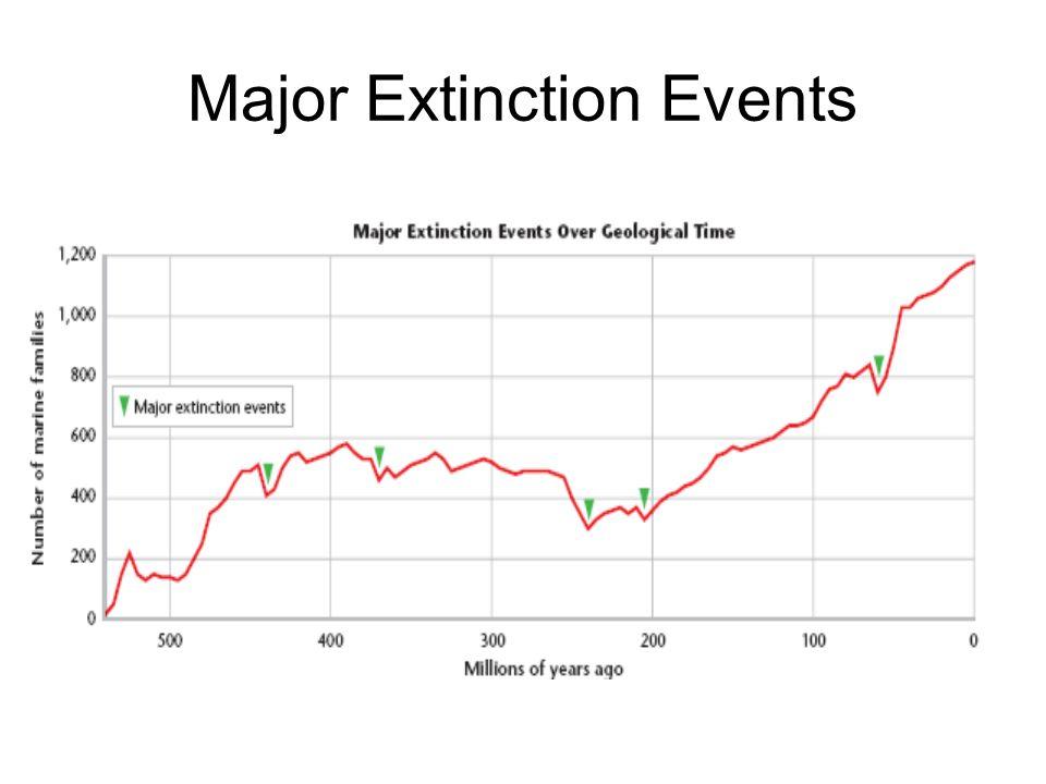 Major Extinction Events