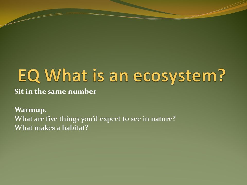 Sit in the same number Warmup. What are five things youd expect to see in nature? What makes a habitat?