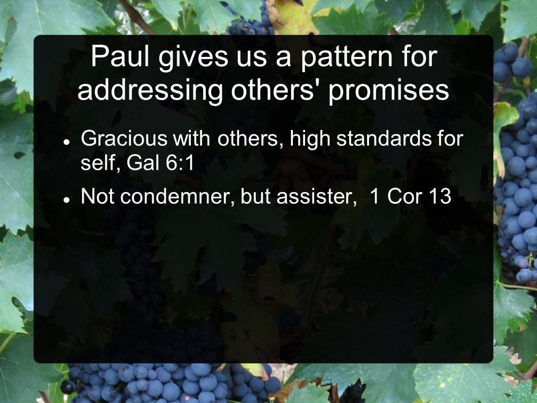 Paul gives us a pattern for addressing others' promises Gracious with others, high standards for self, Gal 6:1 Not condemner, but assister, 1 Cor 13