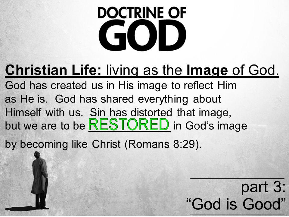Christian Life: living as the Image of God.