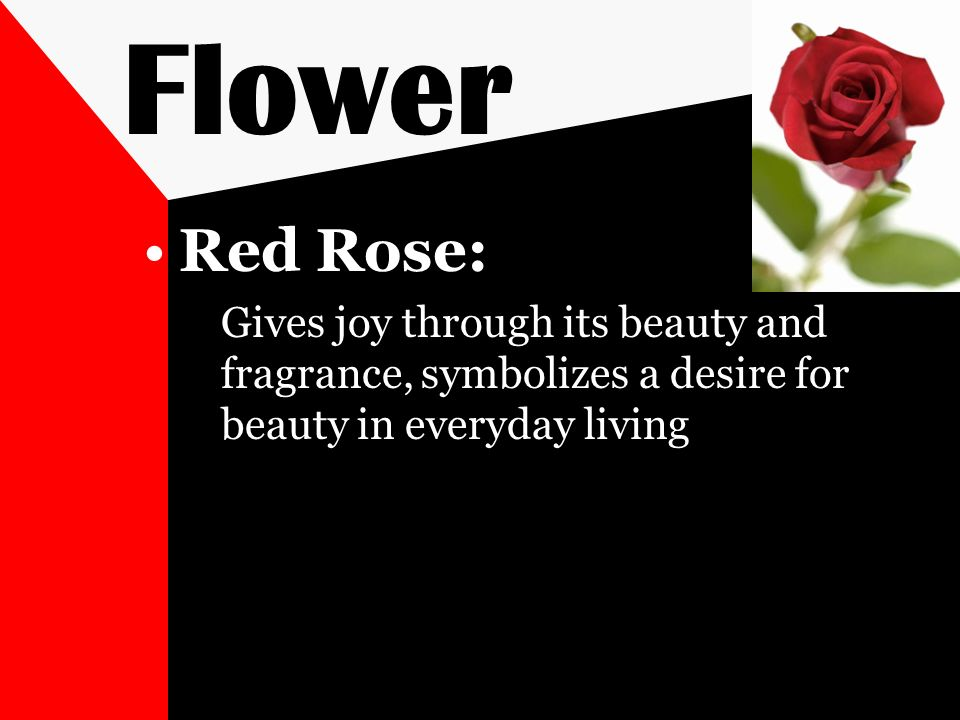 Flower Red Rose: Gives joy through its beauty and fragrance, symbolizes a desire for beauty in everyday living