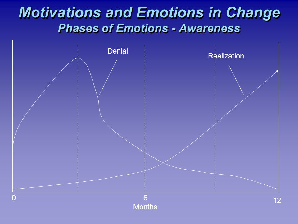 Motivations and Emotions in Change Phases of Emotions - Awareness 06 Months 12 Denial Realization