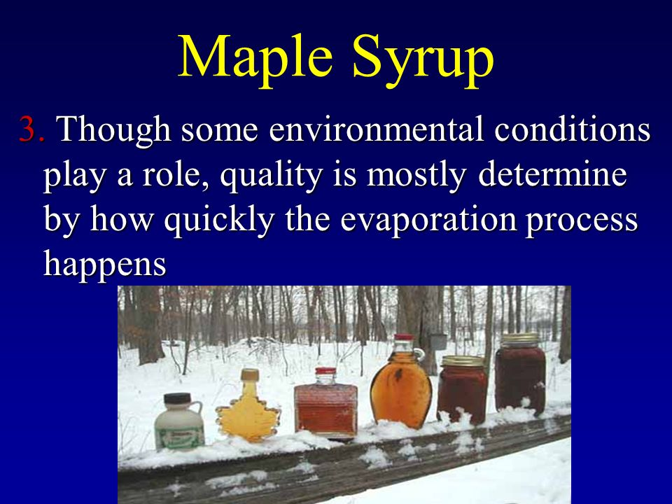 Maple Syrup 3.