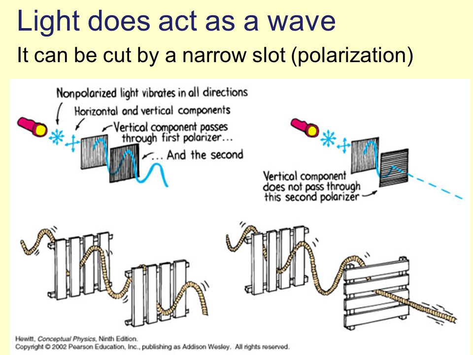 Light does act as a wave It can be cut by a narrow slot (polarization)