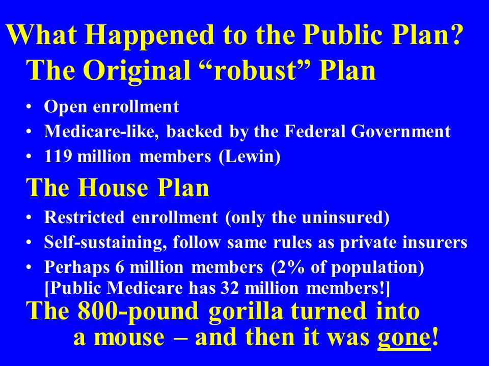 What Happened to the Public Plan.