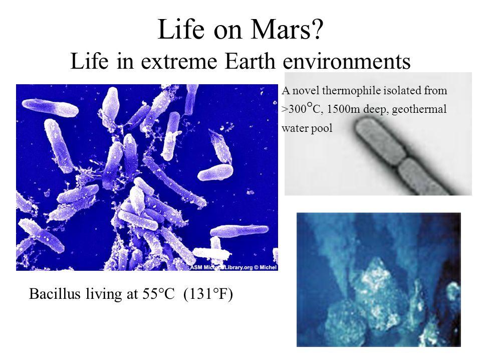 Life on Mars.
