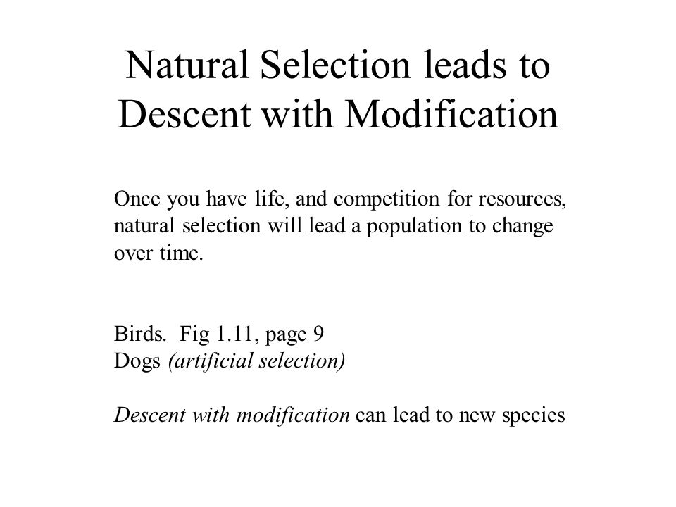 Natural Selection leads to Descent with Modification Once you have life, and competition for resources, natural selection will lead a population to change over time.