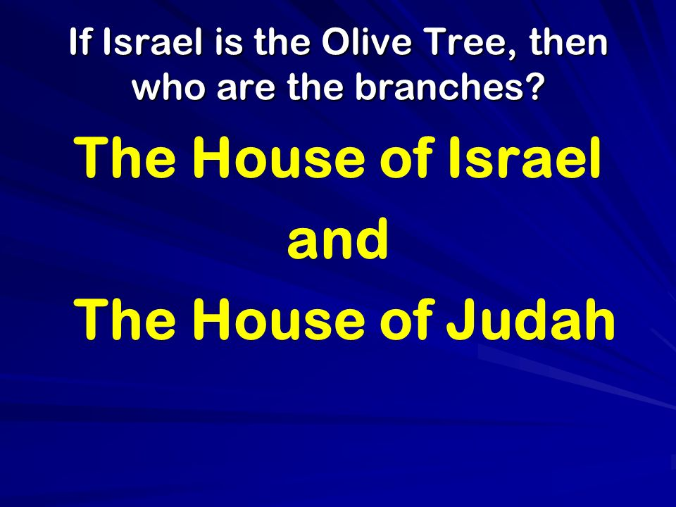 If Israel is the Olive Tree, then who are the branches? The House of Israel and The House of Judah