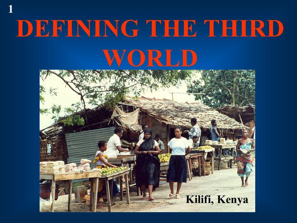 1 DEFINING THE THIRD WORLD Kilifi, Kenya