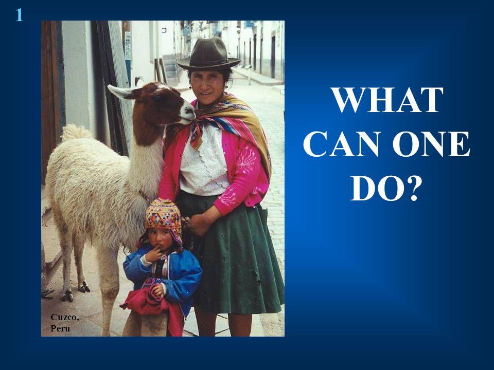WHAT CAN ONE DO? Cuzco, Peru 1