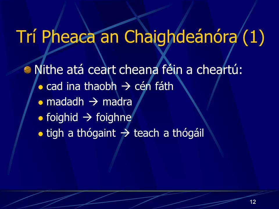 12 Trí Pheaca an Chaighdeánóra (1) Nithe atá ceart cheana féin a cheartú: cad ina thaobh cén fáth madadh madra foighid foighne tigh a thógaint teach a thógáil