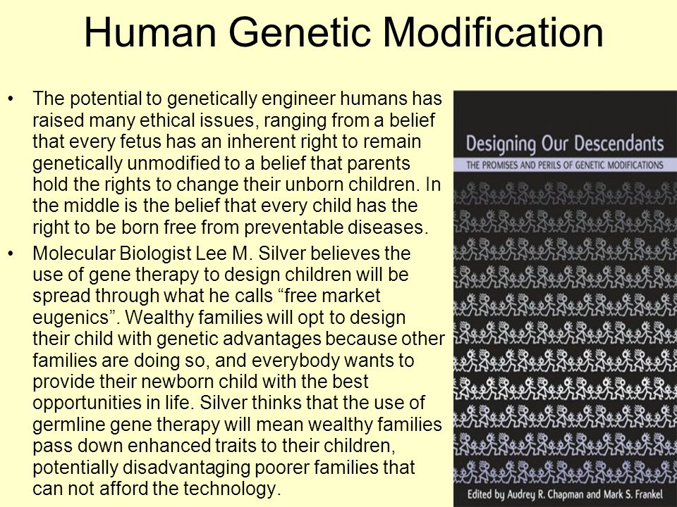Human Genetic Modification The potential to genetically engineer humans has raised many ethical issues, ranging from a belief that every fetus has an