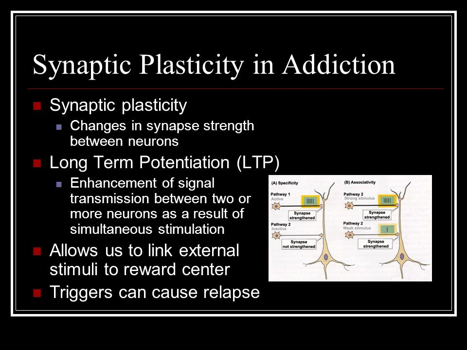 Synaptic Plasticity in Addiction Synaptic plasticity Changes in synapse strength between neurons Long Term Potentiation (LTP) Enhancement of signal transmission between two or more neurons as a result of simultaneous stimulation Allows us to link external stimuli to reward center Triggers can cause relapse