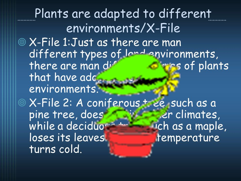 Plants are adapted to different environments/X-File X-File 1:Just as there are man different types of land environments, there are man different types