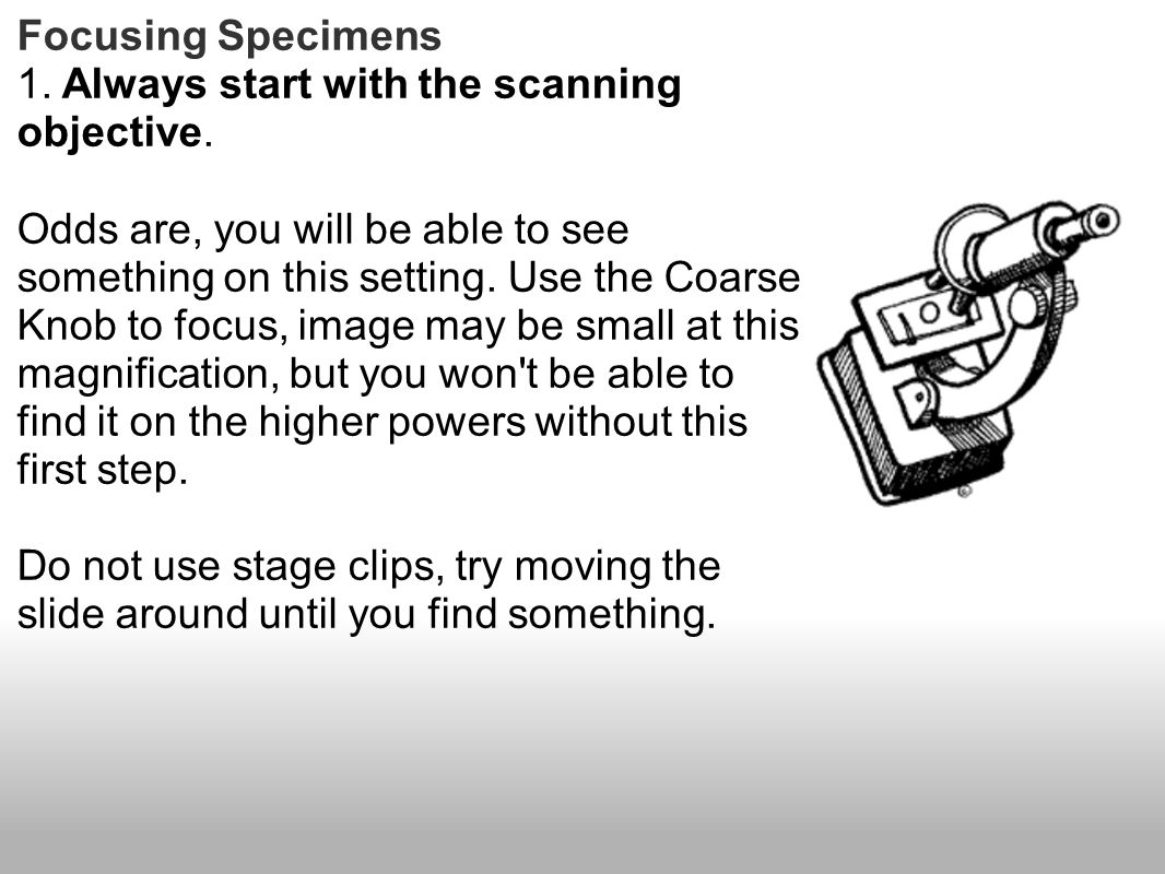 Focusing Specimens 1. Always start with the scanning objective. Odds are, you will be able to see something on this setting. Use the Coarse Knob to fo