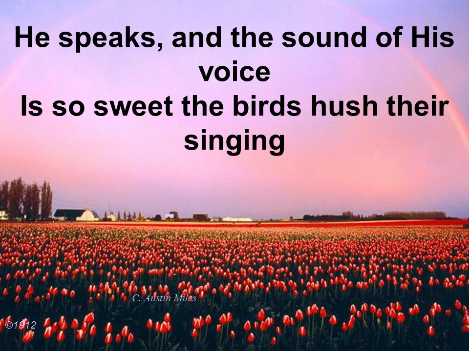 He speaks, and the sound of His voice Is so sweet the birds hush their singing C. Austin Miles ©1912