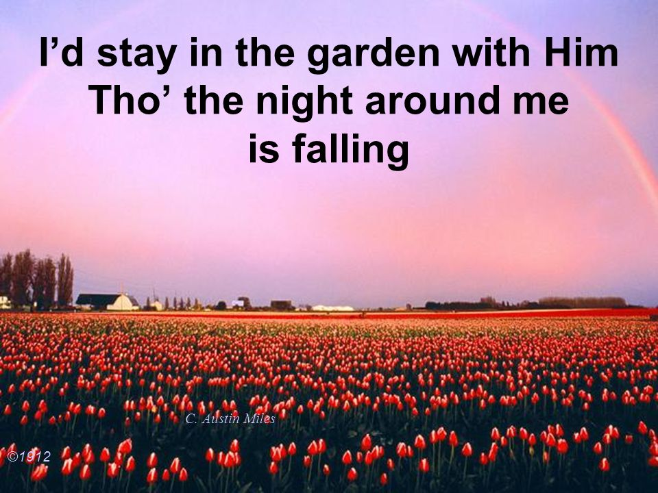 Id stay in the garden with Him Tho the night around me is falling C. Austin Miles ©1912