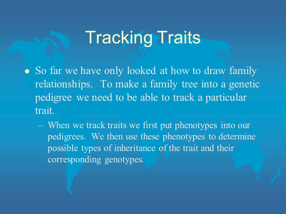 Tracking Traits l So far we have only looked at how to draw family relationships. To make a family tree into a genetic pedigree we need to be able to