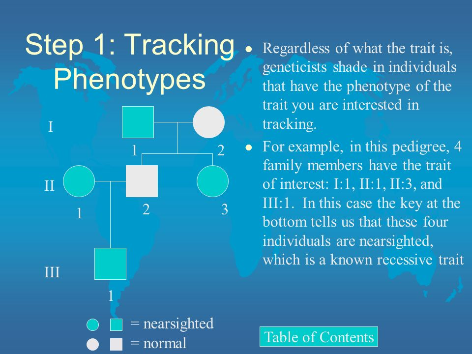 Step 1: Tracking Phenotypes l Regardless of what the trait is, geneticists shade in individuals that have the phenotype of the trait you are intereste