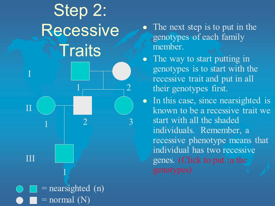 Step 2: Recessive Traits l The next step is to put in the genotypes of each family member. l The way to start putting in genotypes is to start with th